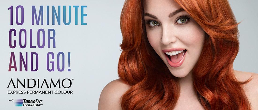 Aloxxi Andiamo Express Permanent Hair Colour 60g 2oz 2n 11n Ebay